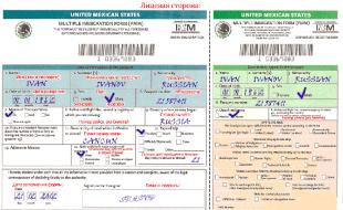 Мексиканская миграционная карта