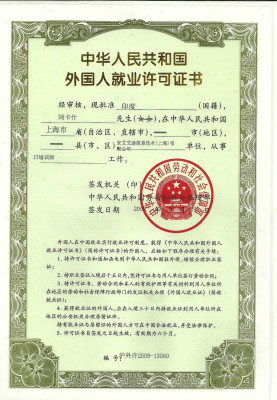 Бланк Working permit