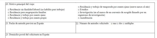 Часть анкеты с данными о типе визы