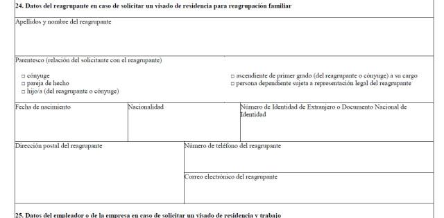 Часть визовой анкеты с данными о семье