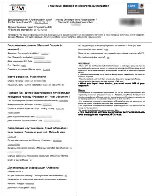 Бланк электронного разрешения