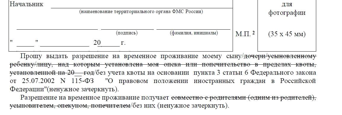 Вид на Жительство в России бланк