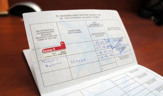 Паспорт вакцинации животного
