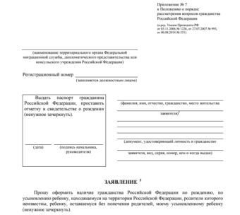 Заявление об оформлении гражданства